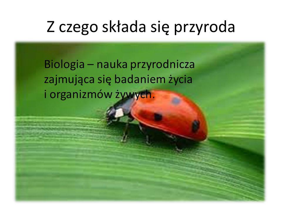 Z czego składa się przyroda Biologia – nauka przyrodnicza zajmująca się badaniem życia i organizmów żywych.