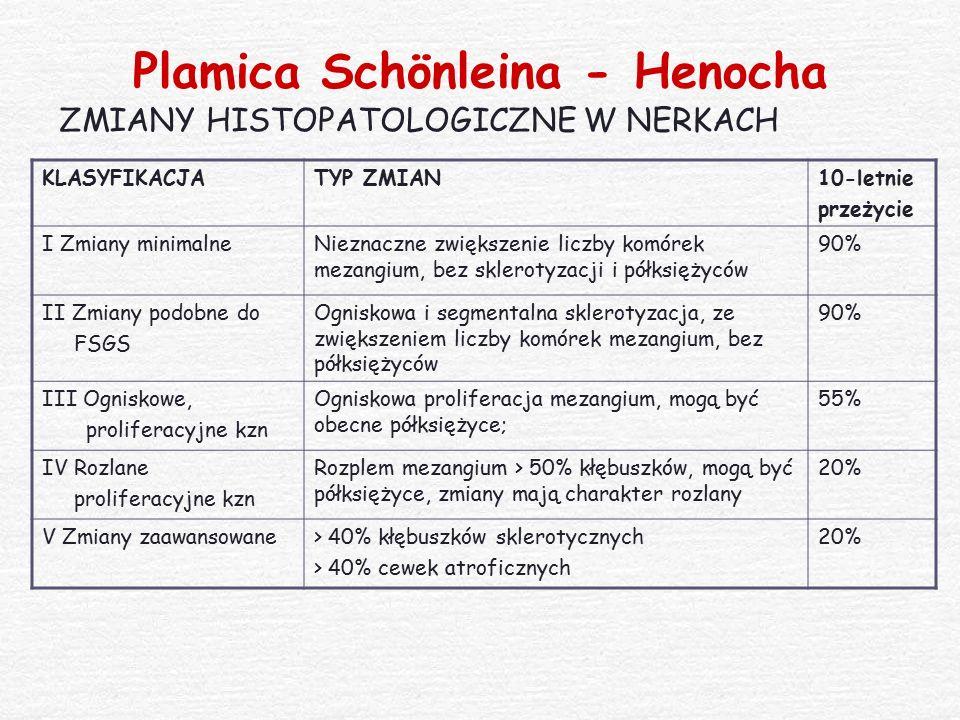 Plamica Schönleina - Henocha ZMIANY HISTOPATOLOGICZNE W NERKACH KLASYFIKACJATYP ZMIAN10-letnie przeżycie I Zmiany minimalneNieznaczne zwiększenie licz