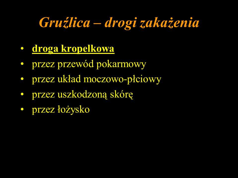 Gruźlica - epidemiologia 1/3 ludności świata - zakażona prątkiem gruźlicy w Polsce (2002 r.): > 65 r.