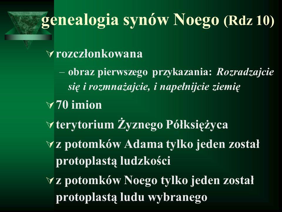 genealogia synów Noego (Rdz 10)  rozczłonkowana –obraz pierwszego przykazania: Rozradzajcie się i rozmnażajcie, i napełnijcie ziemię  70 imion  ter