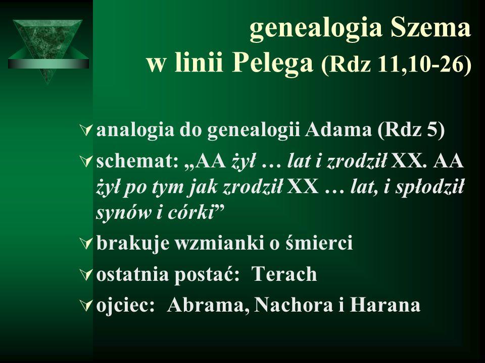 """genealogia Szema w linii Pelega (Rdz 11,10-26)  analogia do genealogii Adama (Rdz 5)  schemat: """"AA żył … lat i zrodził XX. AA żył po tym jak zrodził"""