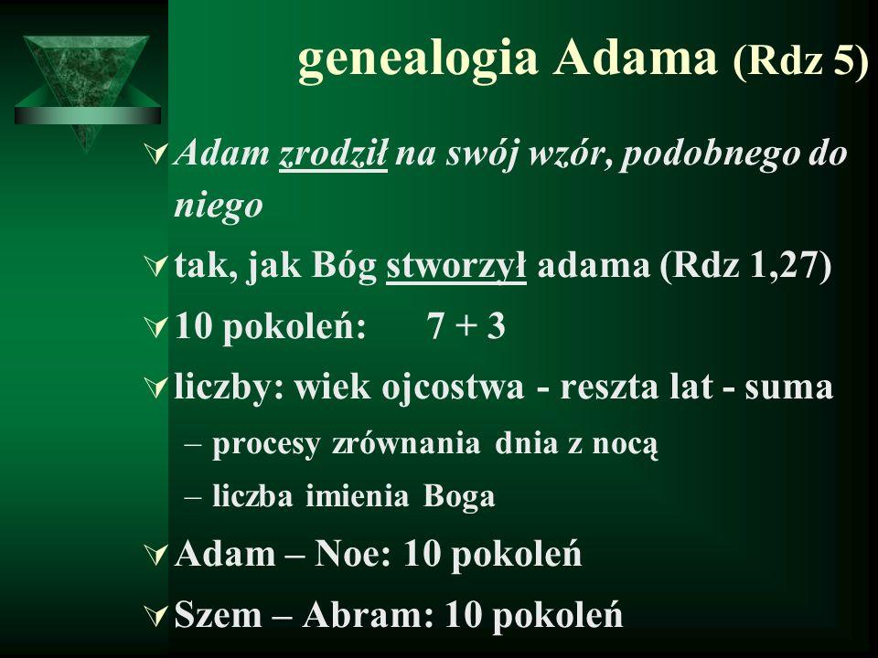 genealogia Adama (Rdz 5)  Adam zrodził na swój wzór, podobnego do niego  tak, jak Bóg stworzył adama (Rdz 1,27)  10 pokoleń: 7 + 3  liczby: wiek o