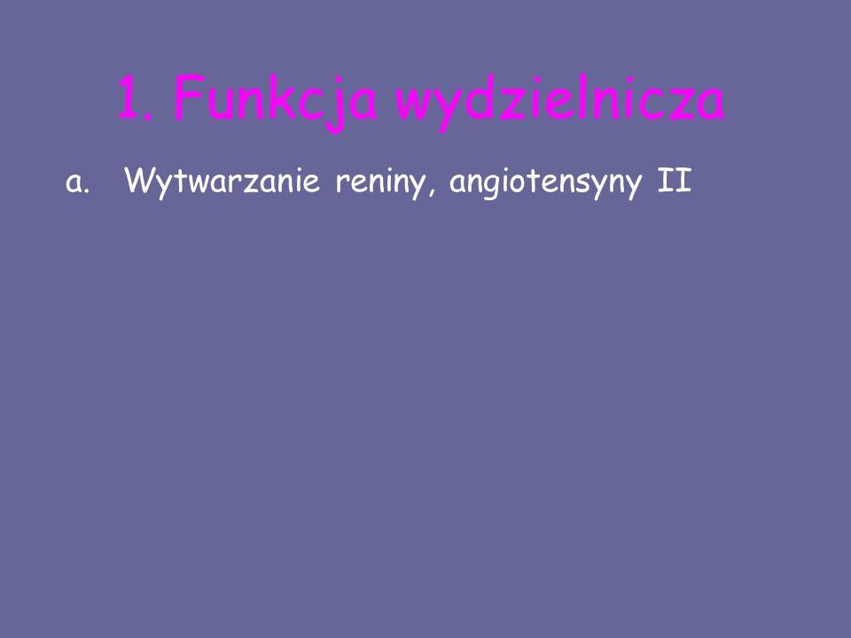 1. Funkcja wydzielnicza a.Wytwarzanie reniny, angiotensyny II