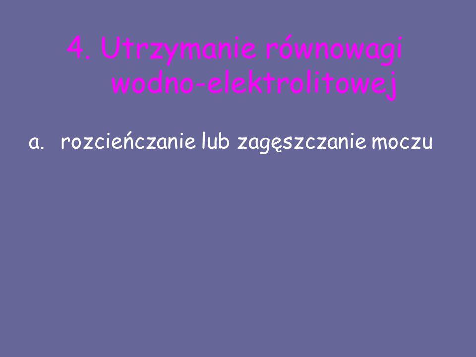 4. Utrzymanie równowagi wodno-elektrolitowej a.rozcieńczanie lub zagęszczanie moczu