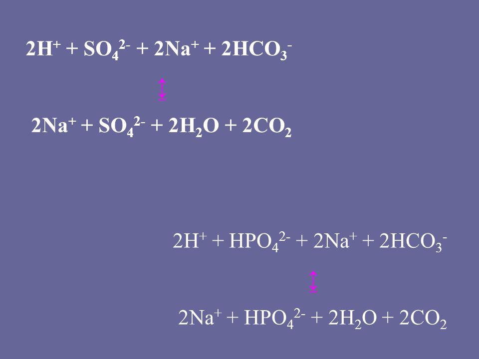 2H + + HPO 4 2- + 2Na + + 2HCO 3 - ↨ 2Na + + HPO 4 2- + 2H 2 O + 2CO 2 2H + + SO 4 2- + 2Na + + 2HCO 3 - ↨ 2Na + + SO 4 2- + 2H 2 O + 2CO 2