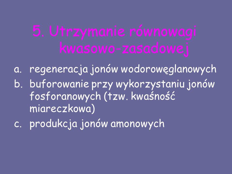 5. Utrzymanie równowagi kwasowo-zasadowej a.regeneracja jonów wodorowęglanowych b.buforowanie przy wykorzystaniu jonów fosforanowych (tzw. kwaśność mi