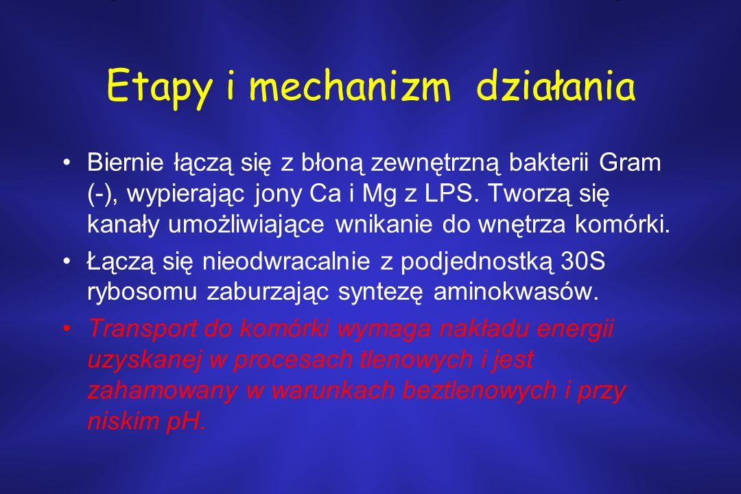 Roksitromycyna –Infekcje dróg oddechowych, skóry i tkanek miękkich.