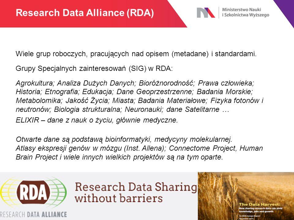 Wiele grup roboczych, pracujących nad opisem (metadane) i standardami. Grupy Specjalnych zainteresowań (SIG) w RDA: Agrokultura; Analiza Dużych Danych