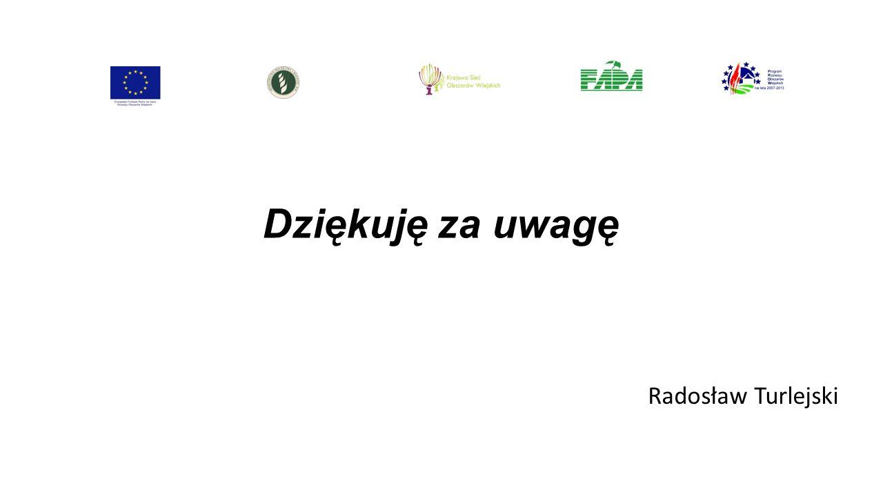 Dziękuję za uwagę Radosław Turlejski