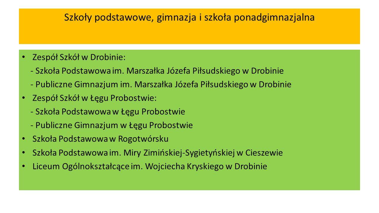 Utworzenie szkolnictwa zawodowego Uchwałą Nr V/40/2015 Rady Miejskiej w Drobinie z dnia 20 lutego 2015 r.
