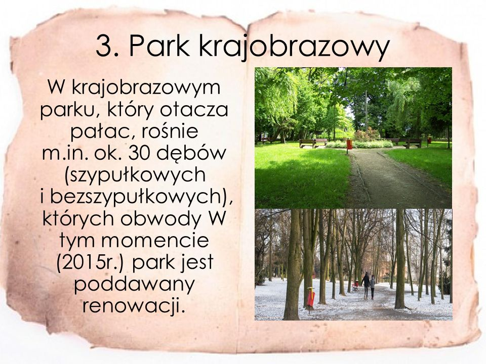 3. Park krajobrazowy W krajobrazowym parku, który otacza pałac, rośnie m.in.