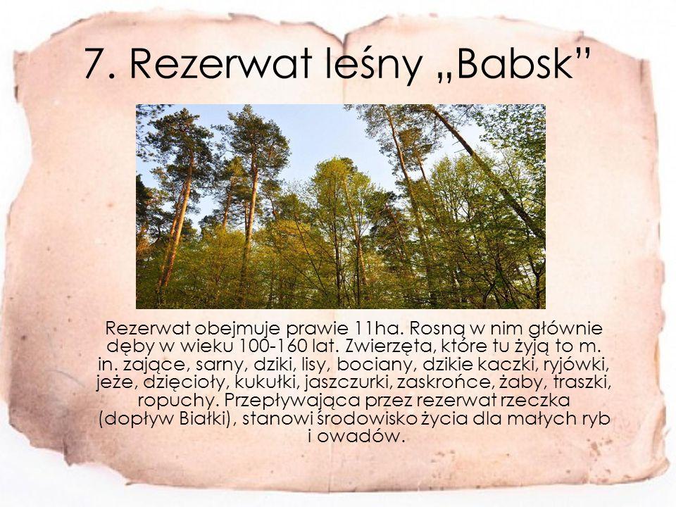 """7.Rezerwat leśny """"Babsk Rezerwat obejmuje prawie 11ha."""