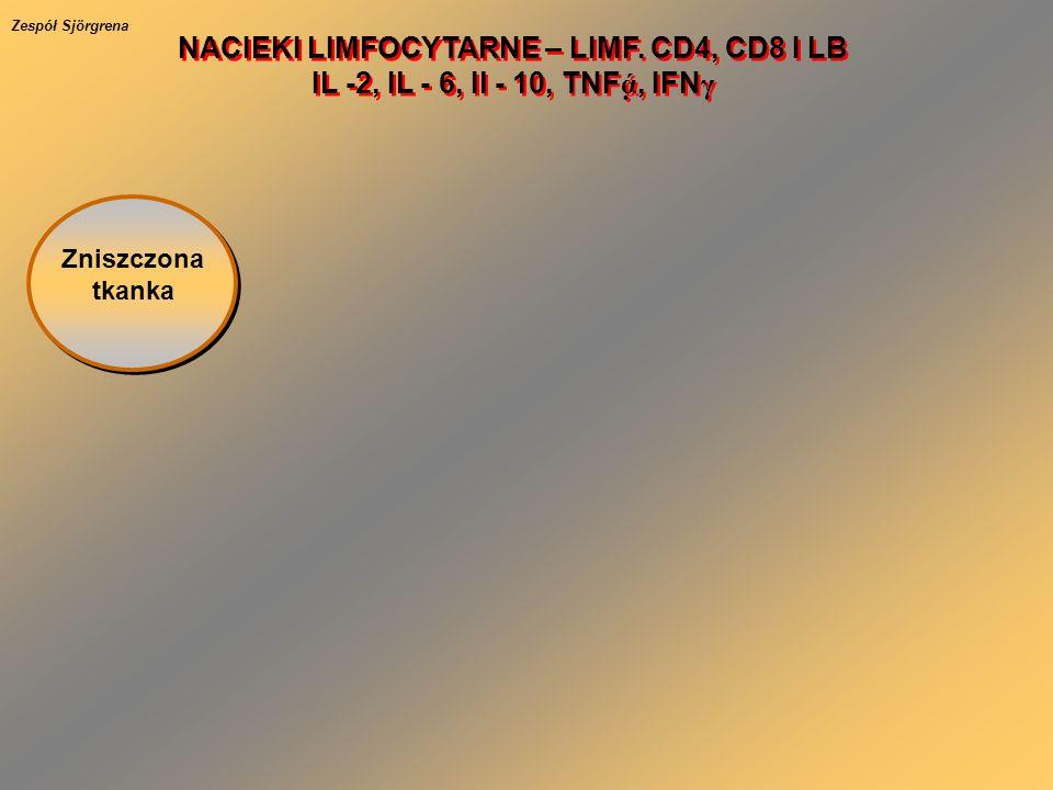 Zniszczona tkanka NACIEKI LIMFOCYTARNE – LIMF. CD4, CD8 I LB IL -2, IL - 6, Il - 10, TNF ά, IFN γ NACIEKI LIMFOCYTARNE – LIMF. CD4, CD8 I LB IL -2, I