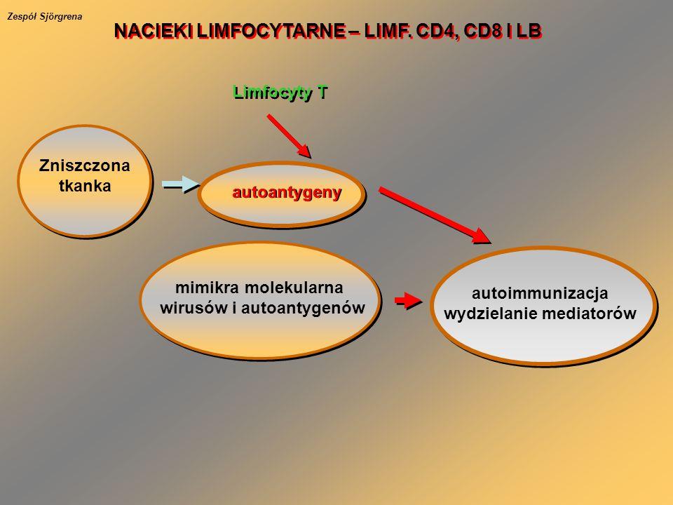 Zniszczona tkanka autoantygeny Limfocyty T autoimmunizacja wydzielanie mediatorów mimikra molekularna wirusów i autoantygenów NACIEKI LIMFOCYTARNE – L
