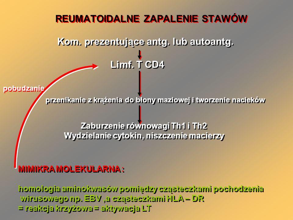 REUMATOIDALNE ZAPALENIE STAWÓW Kom. prezentujące antg. lub autoantg. Limf. T CD4 przenikanie z krążenia do błony maziowej i tworzenie nacieków Zaburze