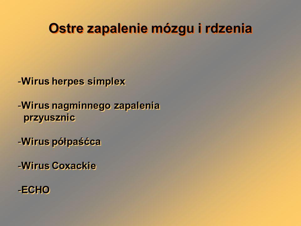 -Wirus herpes simplex -Wirus nagminnego zapalenia przyusznic -Wirus półpaśćca -Wirus Coxackie -ECHO -Wirus herpes simplex -Wirus nagminnego zapalenia