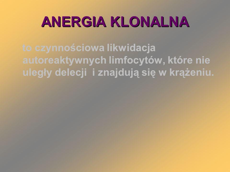 ANERGIA KLONALNA to czynnościowa likwidacja autoreaktywnych limfocytów, które nie uległy delecji i znajdują się w krążeniu.