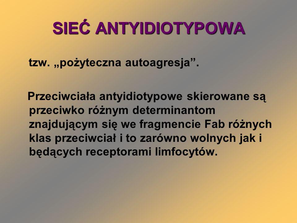 Przykłady uogólnionych chorób autoimmunologicznych z uwzględnieniem autoantygenu i miejsca ich występowania