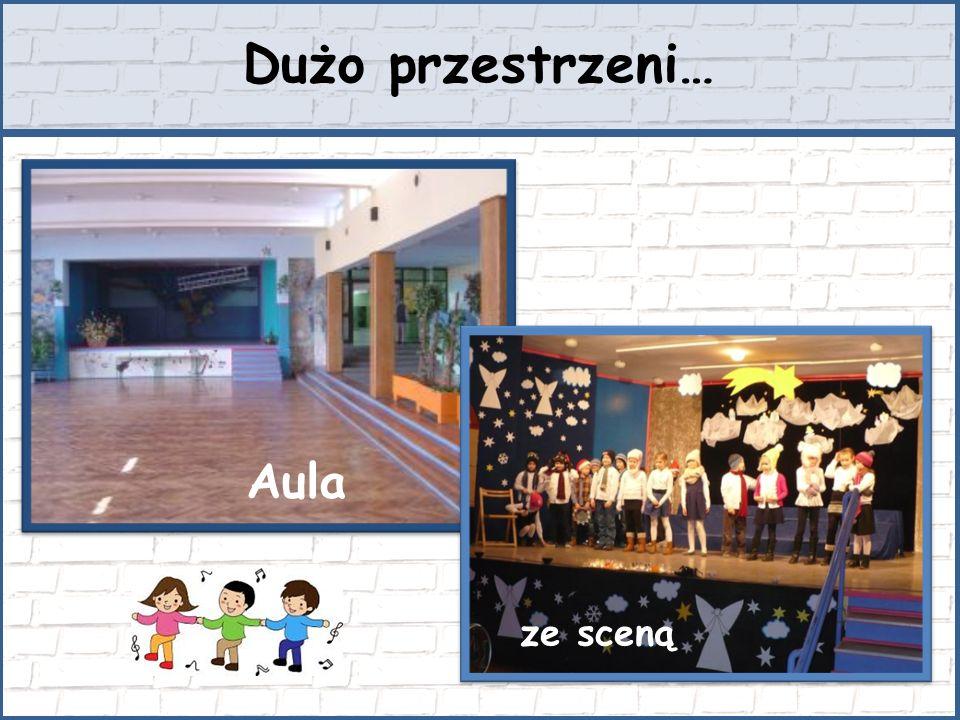 Dużo przestrzeni… Aula ze sceną
