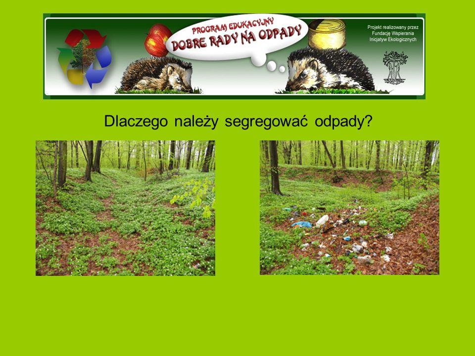 Dlaczego należy segregować odpady?