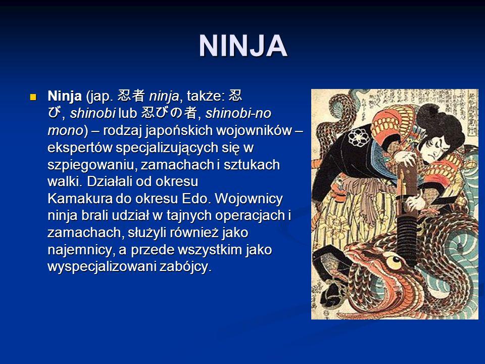 NINJA Ninja (jap.