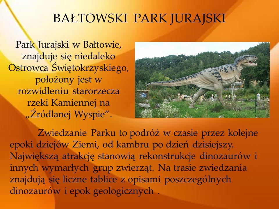 """Park Jurajski w Bałtowie, znajduje się niedaleko Ostrowca Świętokrzyskiego, położony jest w rozwidleniu starorzecza rzeki Kamiennej na """"Źródlanej Wysp"""