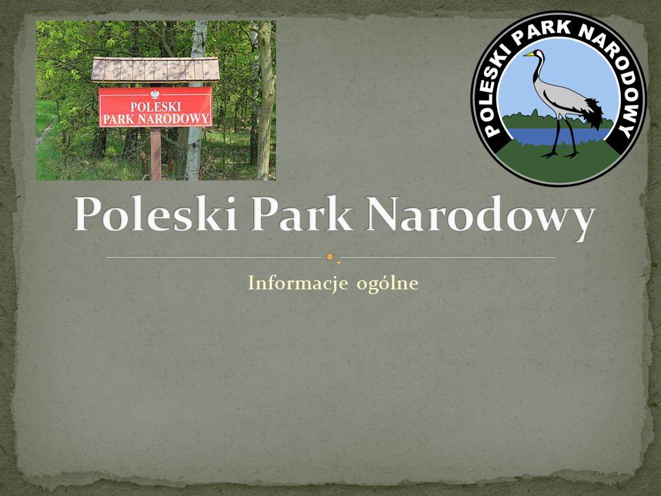 Źródła : Wikipedia Obrazy : pl.wikipedia.org, www.pinterest.com, www.adfg.alaska.gov, old.skg.uw.edu.pl, pracownia.org.pl, www.geo.uj.edu.pl,kochanezdrowie.blogspot.com, pijawkiwrocław.pl, www.garnek.pl,www.wedkuje.pl, nahak.pl, sites.google.com, debiany.pl, przyroda.szyc.org, www.medianauka.pl, dinoanimals.pl, plfoto.com, ekologia.pl, globber.pl, karetta.pl, fmix.pl, www.panoramio.com, arturfoto.eu, www.pawelwaclawik.pl, drapezniki.pl Wykonanie : Mikołaj Prasoł