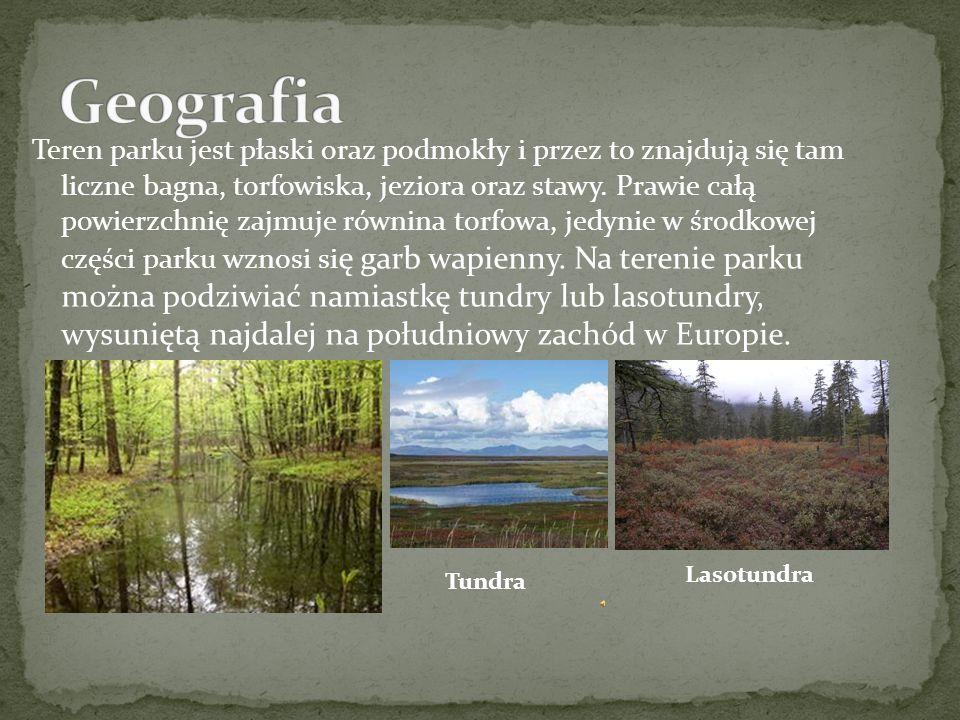 Poleski Park Narodowy- park położony w województwie lubelskim, w polskiej części Polesia, utworzony 1 maja 1990 roku.