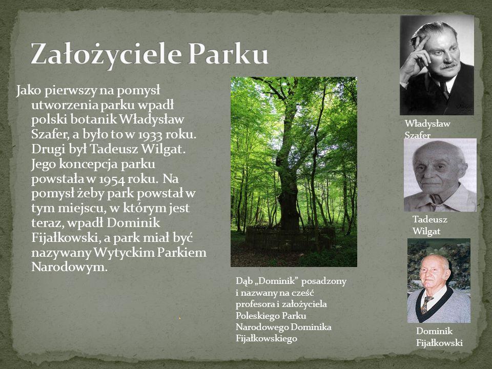 Teren parku jest płaski oraz podmokły i przez to znajdują się tam liczne bagna, torfowiska, jeziora oraz stawy.