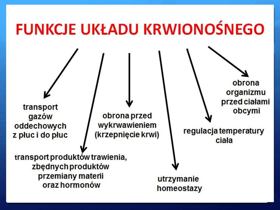 Bibliografia  http://portalwiedzy.onet.pl/142102,,,,uklad_krwionosny_i_li mfatyczny_czlowieka,haslo.html http://portalwiedzy.onet.pl/142102,,,,uklad_krwionosny_i_li mfatyczny_czlowieka,haslo.html  http://mojeserce.info/serce-cz-1-funkcje-i-budowa/ http://mojeserce.info/serce-cz-1-funkcje-i-budowa/  http://pl.wikipedia.org/wiki/Serce http://pl.wikipedia.org/wiki/Serce  http://www.rp.pl/artykul/368188.html http://www.rp.pl/artykul/368188.html  http://pl.wikipedia.org/wiki/Układ_krwionośny_człowieka http://pl.wikipedia.org/wiki/Układ_krwionośny_człowieka