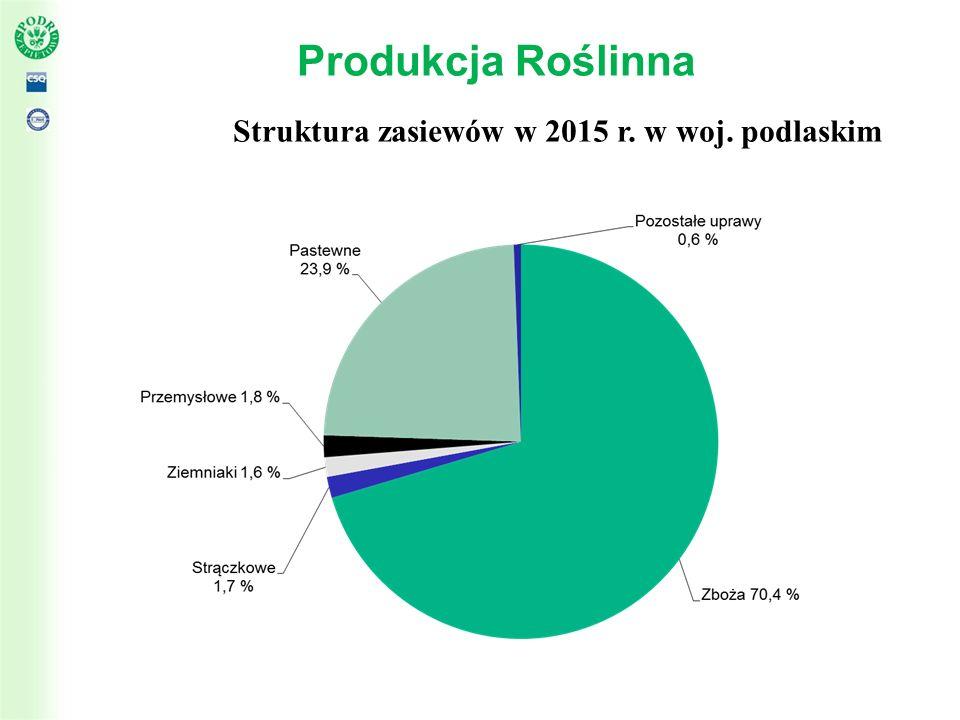 Produkcja Roślinna - zboża Powierzchnia zasiewów zbóż w województwie podlaskim w roku 2015 wyniosła 435 286 ha co stanowiło około 70% w strukturze zasiewów Struktura zasiewów roślin zbożowych w województwie podlaskim w 2015 r