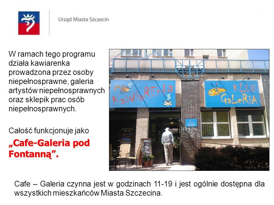 Program realizowany w Cafe - Galerii jest częścią rehabilitacji społeczno-zawodowej osób chorujących psychicznie, a jego nadrzędnym celem jest przygotowanie tych osób do pracy na wolnym rynku.