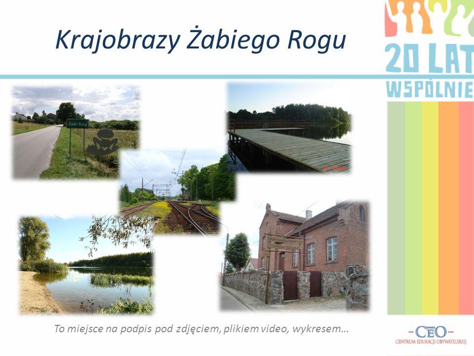 Wywiad Poszukując informacji o ostatnich dwóch dekadach w Żabim Rogu postanowiliśmy skonsultować się mieszkanką tej wsi.