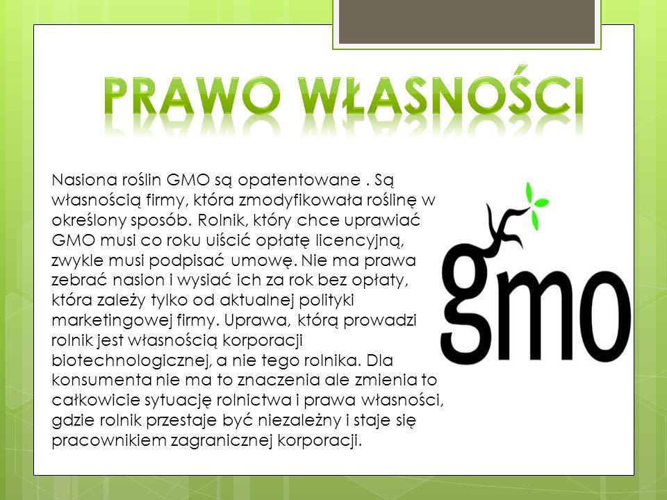 Nasiona roślin GMO są opatentowane.