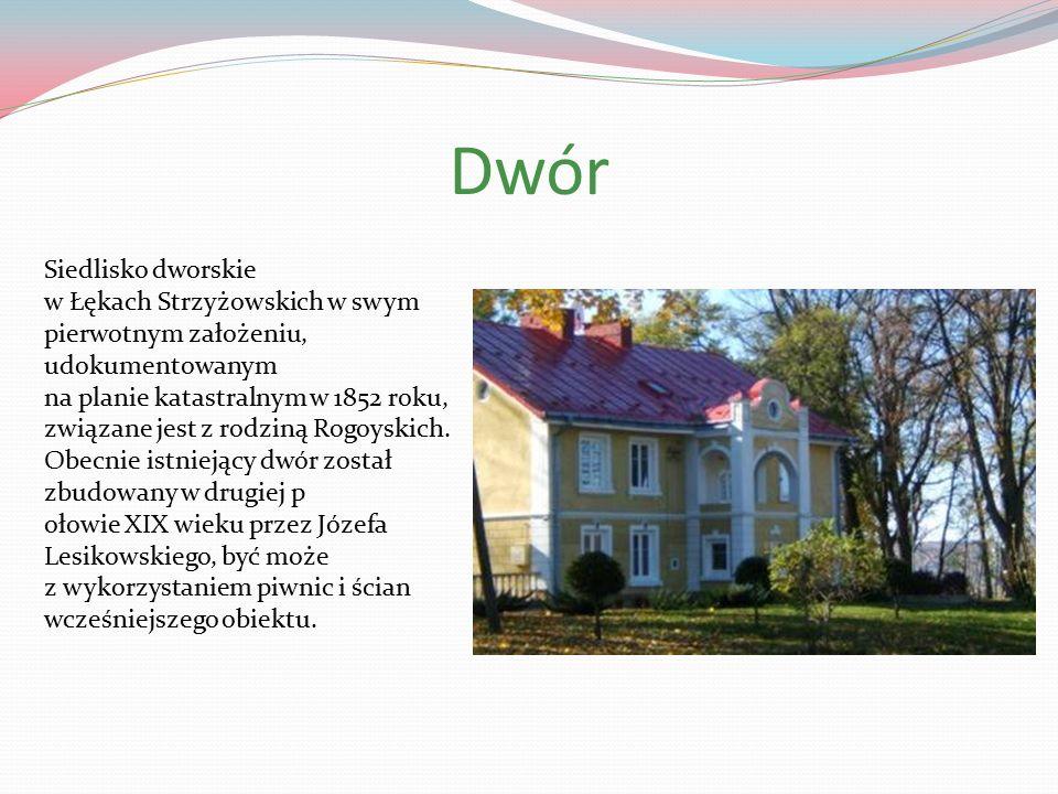 Dwór Siedlisko dworskie w Łękach Strzyżowskich w swym pierwotnym założeniu, udokumentowanym na planie katastralnym w 1852 roku, związane jest z rodziną Rogoyskich.