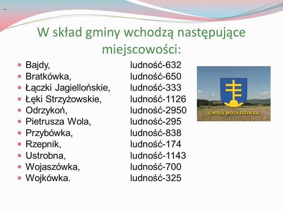 W skład gminy wchodzą następujące miejscowości: Bajdy,ludność-632 Bratkówka, ludność-650 Łączki Jagiellońskie, ludność-333 Łęki Strzyżowskie, ludność-1126 Odrzykoń, ludność-2950 Pietrusza Wola, ludność-295 Przybówka, ludność-838 Rzepnik, ludność-174 Ustrobna, ludność-1143 Wojaszówka, ludność-700 Wojkówka.ludność-325