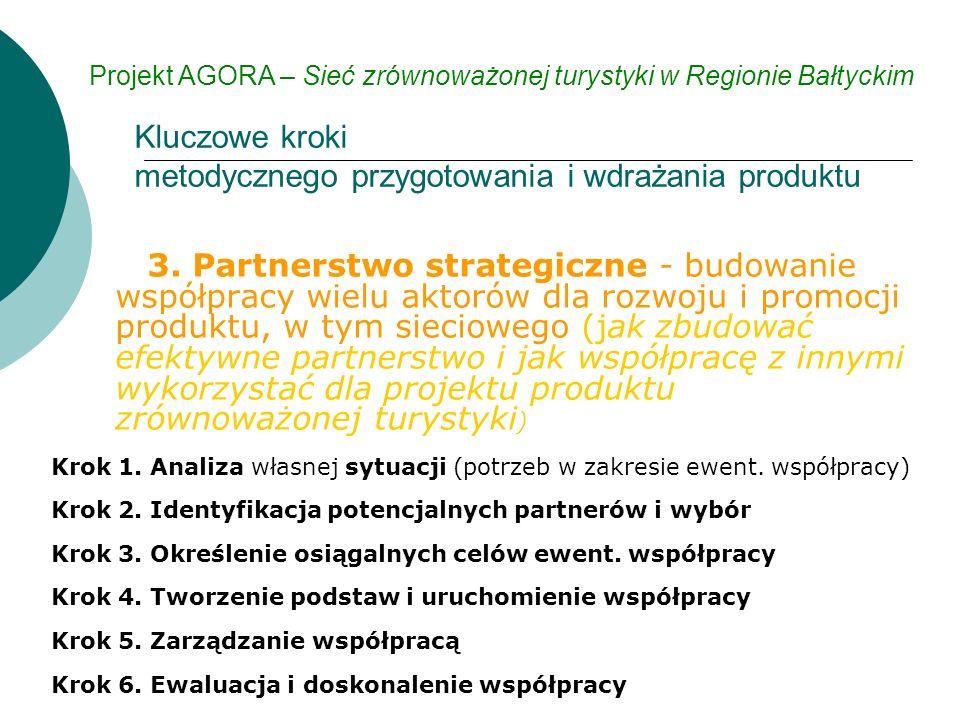 3. Partnerstwo strategiczne - budowanie współpracy wielu aktorów dla rozwoju i promocji produktu, w tym sieciowego (jak zbudować efektywne partnerstwo