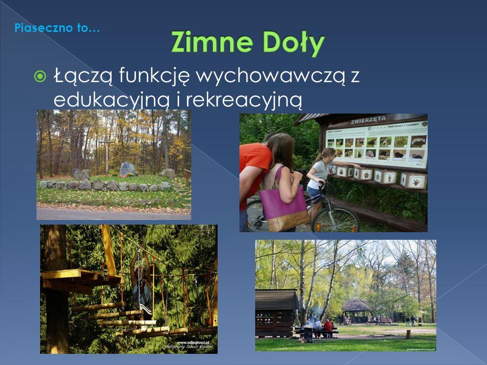  Łączą funkcję wychowawczą z edukacyjną i rekreacyjną Piaseczno to…
