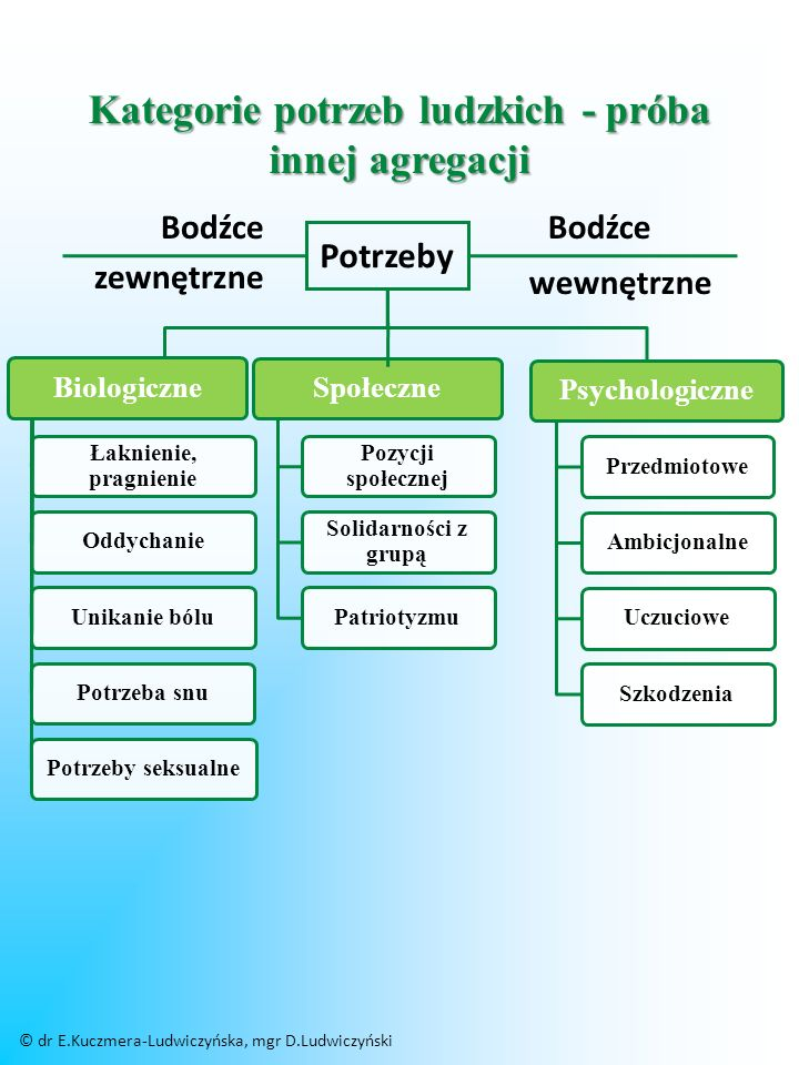 Schemat występowania frustracji PotrzebaDziałanieCel Przeszkoda utrudniająca osiągnięcie celu © dr E.Kuczmera-Ludwiczyńska, mgr D.Ludwiczyński