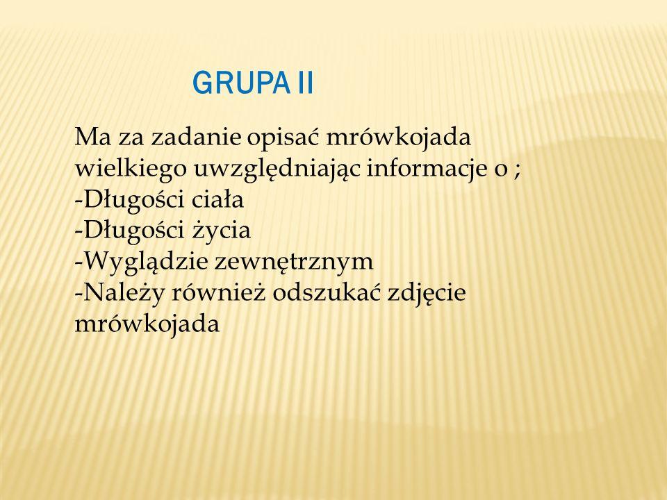 GRUPA II Ma za zadanie opisać mrówkojada wielkiego uwzględniając informacje o ; -Długości ciała -Długości życia -Wyglądzie zewnętrznym -Należy również odszukać zdjęcie mrówkojada