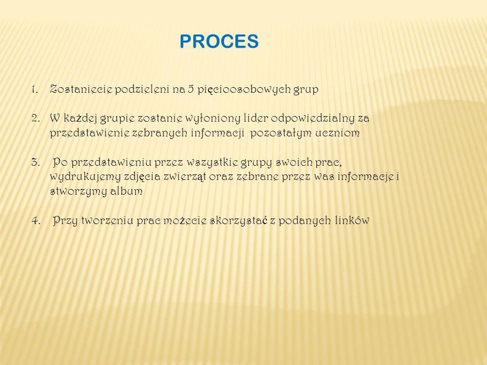 PROCES 1.Zostaniecie podzieleni na 5 pi ę cioosobowych grup 2.W ka ż dej grupie zostanie wyłoniony lider odpowiedzialny za przedstawienie zebranych informacji pozostałym uczniom 3.