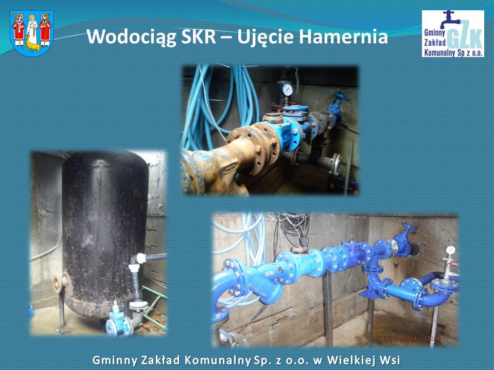 Wodociąg SKR – Ujęcie Hamernia