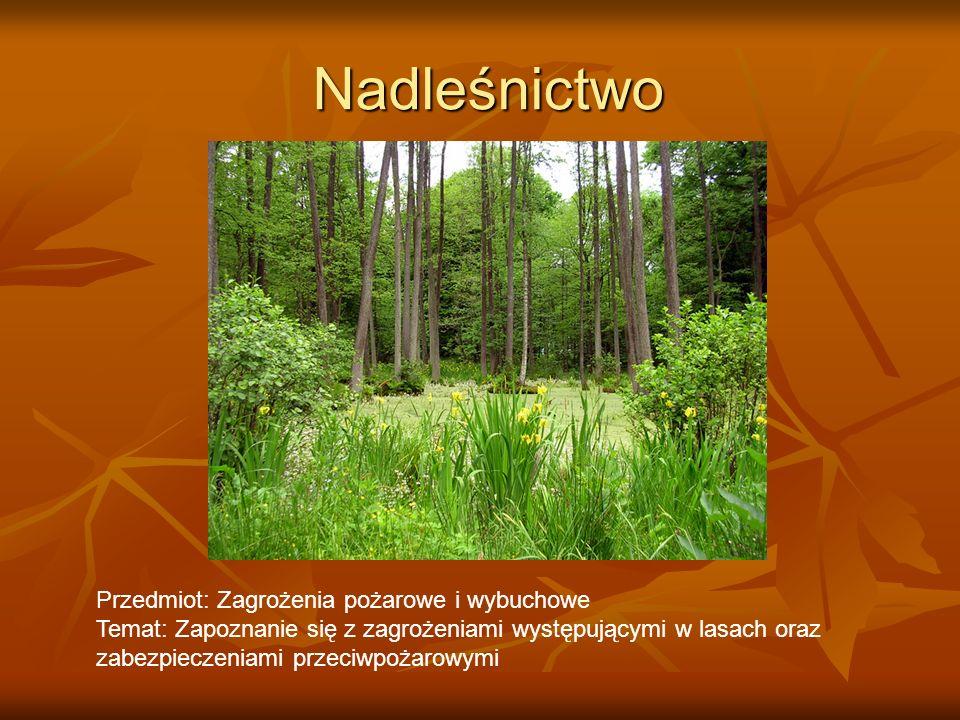 Nadleśnictwo Przedmiot: Zagrożenia pożarowe i wybuchowe Temat: Zapoznanie się z zagrożeniami występującymi w lasach oraz zabezpieczeniami przeciwpożar