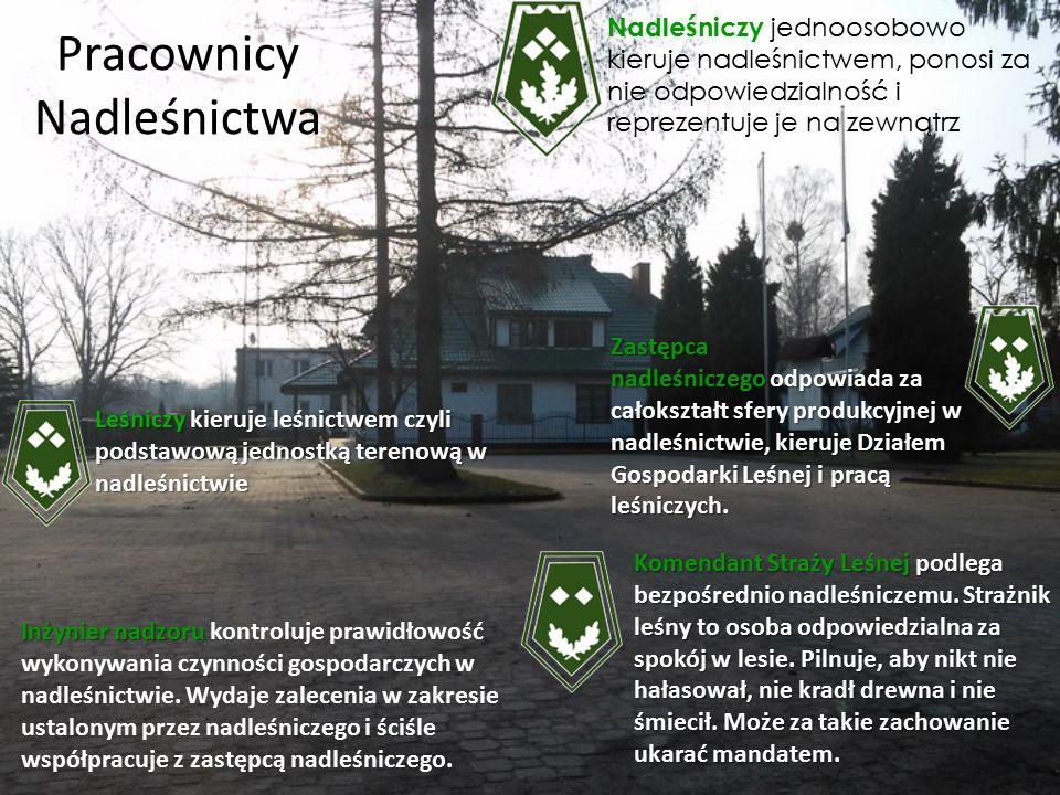 Położenie Nasze nadleśnictwo położone jest na terenie dwóch województw: łódzkiego w powiatach: łowickim, rawskim, skierniewickim, tomaszowskim, Skierniewice Mieście i mazowieckiego w powiecie żyrardowskim.