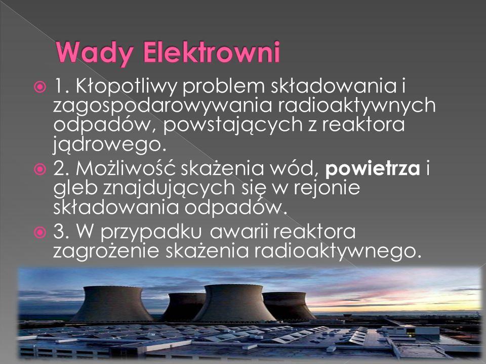  1. Kłopotliwy problem składowania i zagospodarowywania radioaktywnych odpadów, powstających z reaktora jądrowego.  2. Możliwość skażenia wód, powie