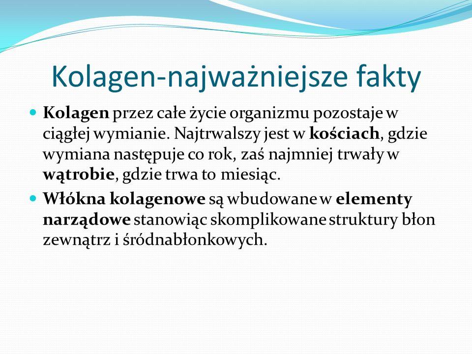 Kolagen-najważniejsze fakty Kolagen przez całe życie organizmu pozostaje w ciągłej wymianie.
