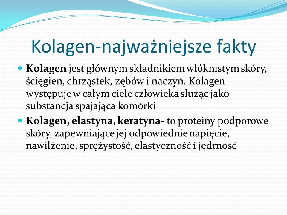Kolagen-najważniejsze fakty Kolagen jest głównym składnikiem włóknistym skóry, ścięgien, chrząstek, zębów i naczyń.