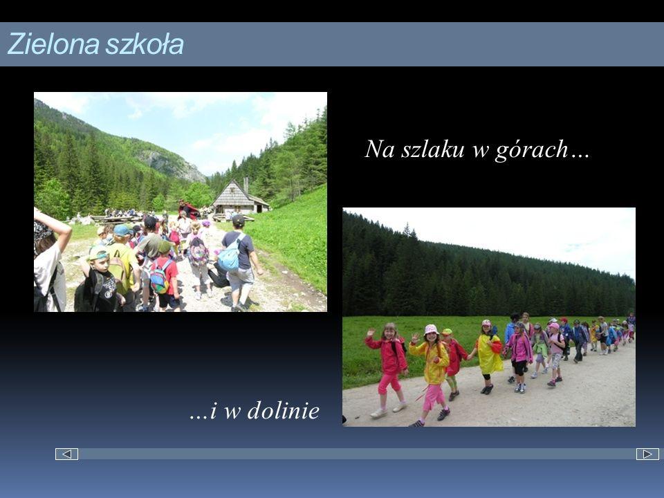 Zielona szkoła Na szlaku w górach… …i w dolinie