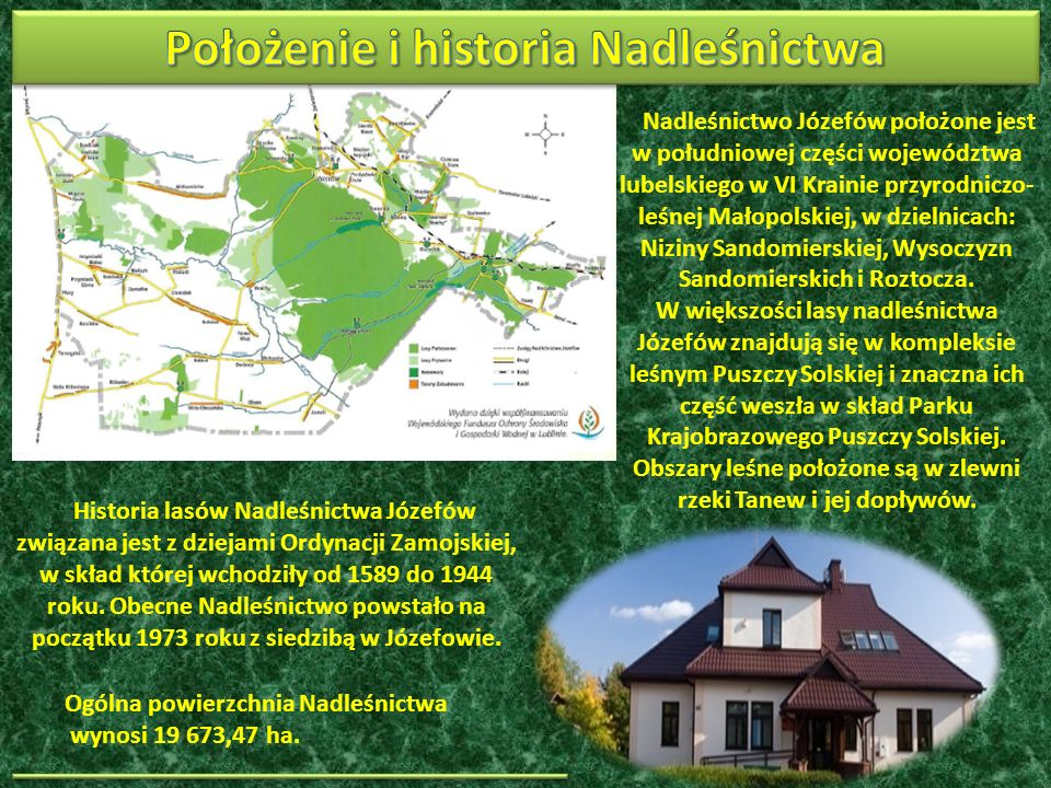 Nadleśnictwo Józefów położone jest w południowej części województwa lubelskiego w VI Krainie przyrodniczo- leśnej Małopolskiej, w dzielnicach: Niziny Sandomierskiej, Wysoczyzn Sandomierskich i Roztocza.