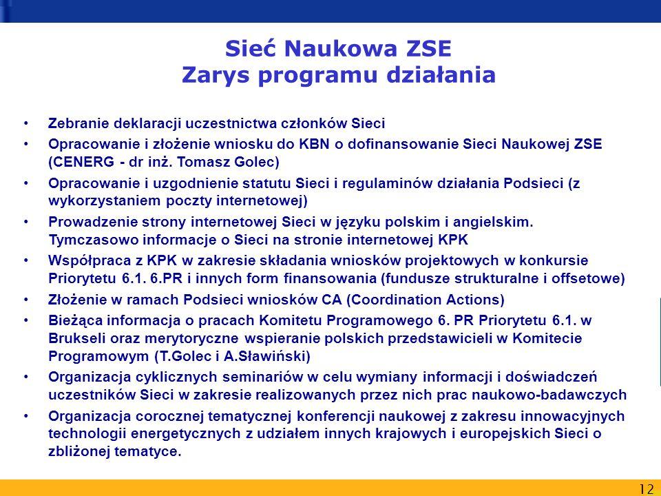 12 Sieć Naukowa ZSE Zarys programu działania Zebranie deklaracji uczestnictwa członków Sieci Opracowanie i złożenie wniosku do KBN o dofinansowanie Sieci Naukowej ZSE (CENERG - dr inż.